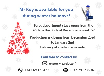 Mr Key is available for you during winter holidays!
